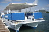 sea monkey dive boat